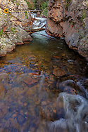 Pool on Big Thompson River in Moraine Park in Rocky Mountain National Park, Colorado, USA