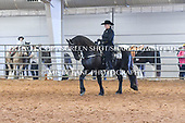 56a. FRIESIAN FREESTYLE RIDING