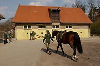 08 APR 2002, BERLIN/GERMANY:<br /> Reiter der neuen Bundesgrenzschutz Reiterstaffel nach der offiziellen Uebergabe der Berliner Polizei-Reiterstaffel an den Bundesgrenzschutz, Bundesgrenzschutzamt Berlin - Reiterstaffel, Grunewald<br /> INFO: Die Beamten sind noch bei der Polizei, koennen nach einer Uebergangsphase zum BGS wechseln und damit bei der Reitersraffel bleiben, oder in den konventionellen Polizeidienst wechseln<br /> IMAGE: 20020408-01-030<br /> KEYWORDS: Reiter, Pferd, Pferde, Grenzschutz, BGS,  Reiterstaffel, Horse, Übergabe