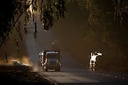 Jeceaba_MG, Brasil...Carros na BR-040 ao entardecer...Cars on BR-040 at dusk...Foto: JOAO MARCOS ROSA / NITRO