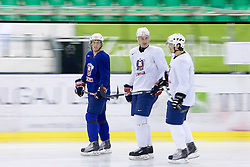 Robert Sabolic, Sabahudin Kovacevic and  at first practice of Slovenian National Ice hockey team before World championship of Division I - group B in Ljubljana, on April 5, 2010, in Hala Tivoli, Ljubljana, Slovenia.  (Photo by Vid Ponikvar / Sportida)