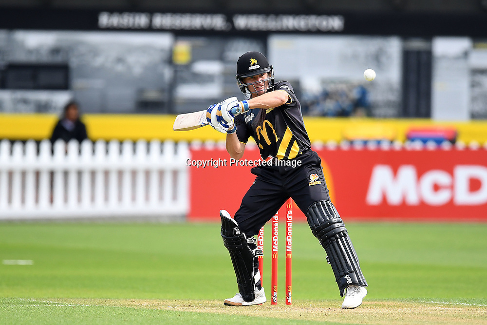 Wellington skipper Hamish Marshall in action during the McDonald's Super Smash, Wellington Firebirds vs Otago Volts, Basin Reserve, Wellington, Tuesday 03rd January 2017. Copyright Photo: Raghavan Venugopal / www.photosport.nz