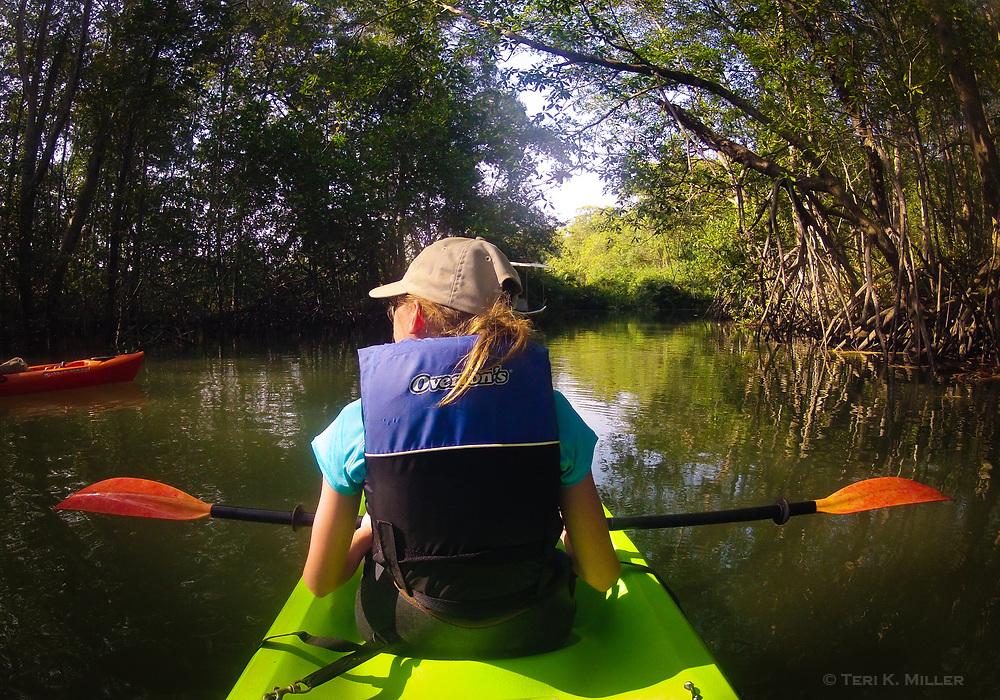 Kayaking Isla Damas Estuary, Quepos, Costa Rica