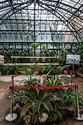 Palermo: Botanic Garden
