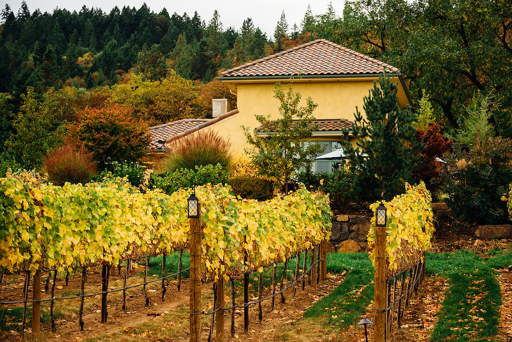 DanCin Vineyard's Tasting Room in Jacksonville, Oregon with fall colors.