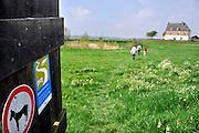 Nederland, Ubbergen, 10-5-2012Serie van verschillende beelden van de Ooijpolder, de boerenlandpaden en nieuwe aanplant van heggen en ecologische verbindingszone van de VNC, vereniging nederlands cultuurlandschap.Pad, boerenpad, boerenlandpad,route,wandelrouteFoto: Flip Franssen/Hollandse Hoogte