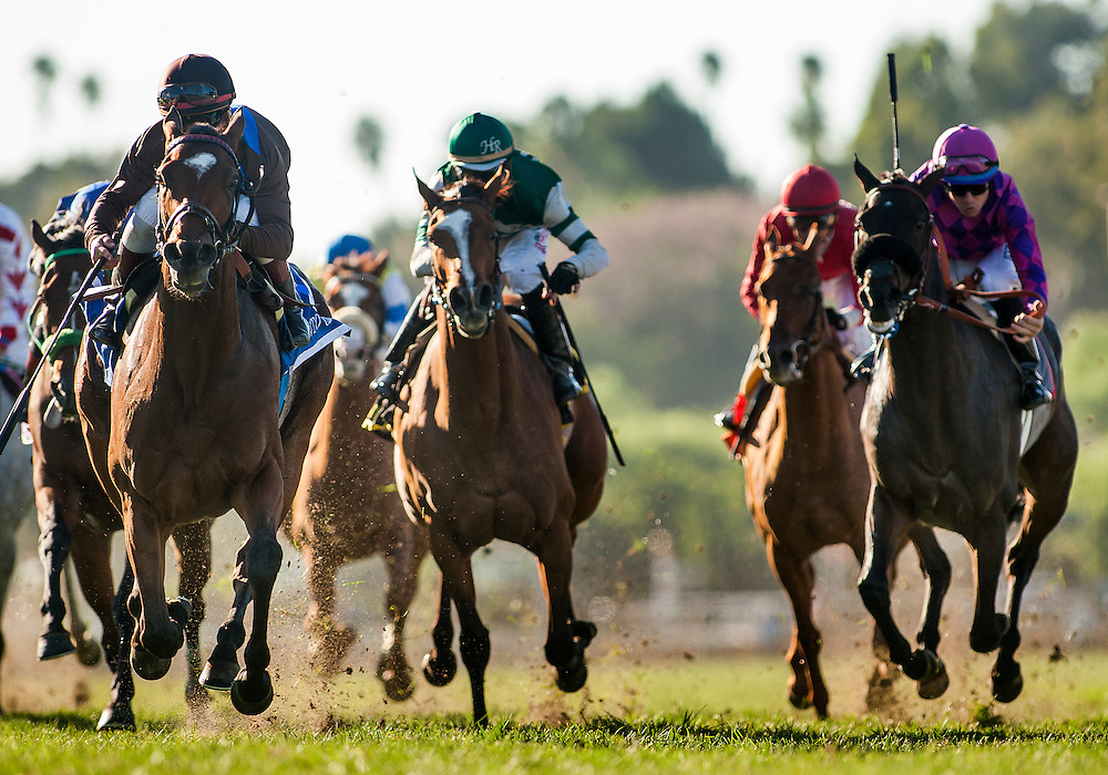 September 26 2015: Photo Call with Drayden Van Dyke (left)defeats Elecktrum and Fanticola to wins the Rodeo Drive Stakes at Santa Anita Park, Arcadia CA. Alex Evers/ESW/CSM