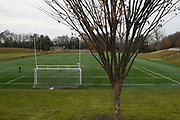 One of the twenty six trees that were planted around a soccer field at Treadwell Park the spring of 2013 in honor of the victims continue to mature, Saturday, Dec. 2, 2017, in Newtown, Conn.  (Jessica Hill for the New York Times)