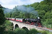 Viadukt Harzquerbahn, HSB, historische Dampfeisenbahn, Harzer Schmalspurbahn, Ilfeld, Harz, Sachsen-Anhalt, Deutschland | historical steamrailway Harzquerbahn, bridge, Ilsfeld, Harz, Saxony-Anhalt, Germany