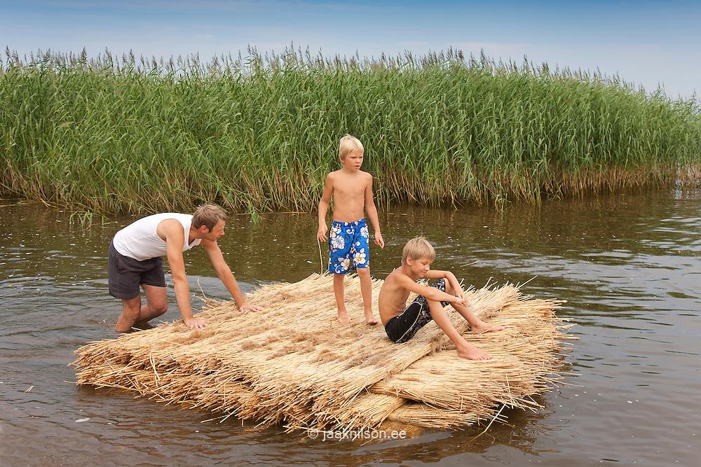 Man Pushing Reed Mat, Lake Peipsi, Estonia, Europe