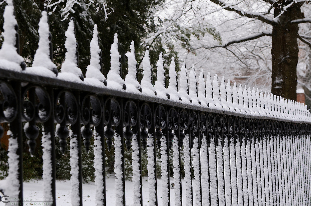 Wrought iron fence, Annapolis, Maryland