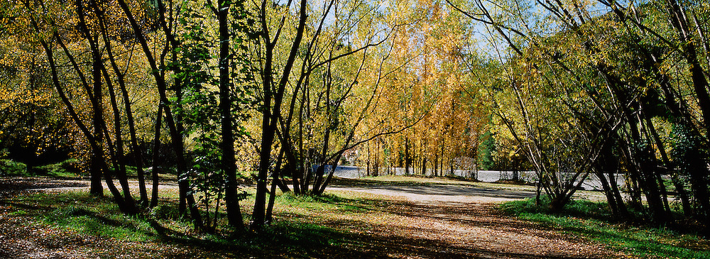 Autumn leaves on the trees by the river in Arrowtown. Arrowtown is the much visited, historic, 4-season, southern hemisphere holiday destination, located only 20 minutes drive from Queenstown, South Island, New Zealand. Arrowtown is a former gold-mining town built on the banks of the Arrow River, once a rich source of gold in the 1860's and now a sophisticated, multi-cultural town catering visitors from around the globe. Arrowtown offers an ambiance with its shops, restaurants, cafes, offices and galleries located within a tight precinct. Photo Tim Clayton