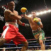 Boxing Showtime Feb 2014