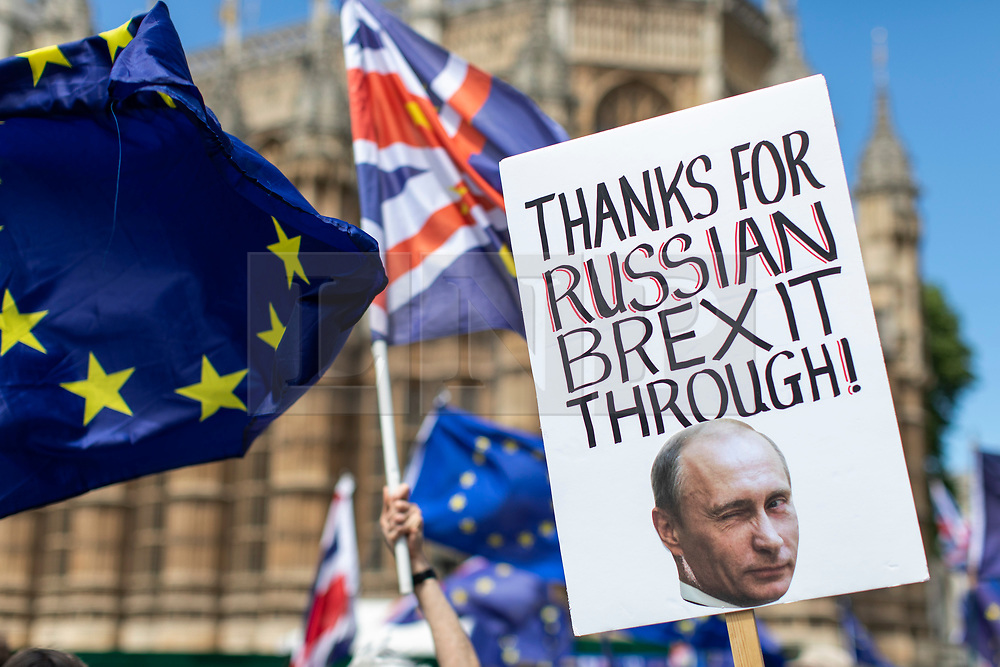 © Licensed to London News Pictures. 11/06/2018. London, UK. Anti-Brexit protesters demonstrate outside Parliament as MPs prepare to debate an online petition which requests that Parliament be given a vote on the final Brexit deal. Photo credit: Rob Pinney/LNP