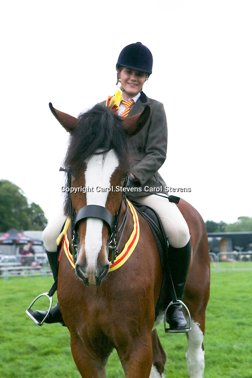 Reanna Taylor Evans riding WOODHOUSE CANDY<br /> 2nd  Ridden Heavy Horse Class