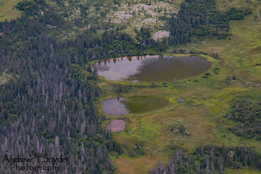 Lakes as seen during an aerial over Katmai, Alaska