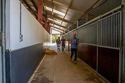Moerings Geert, Bas, Jesther<br /> Stal Moerings - Roosendaal 2018<br /> © Hippo Foto - Dirk Caremans<br /> 15/10/2018
