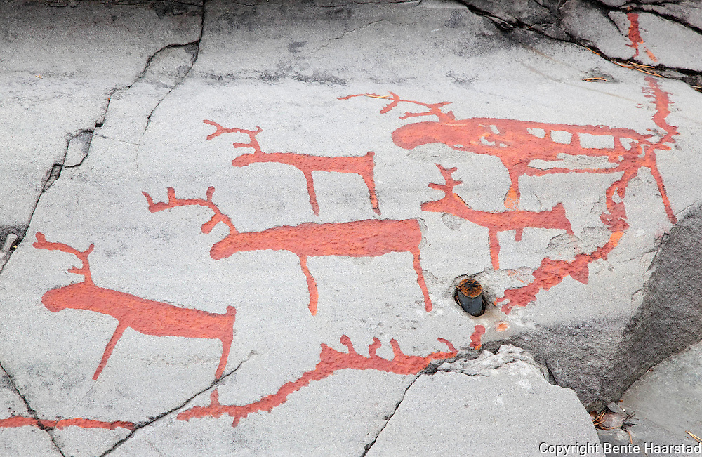 Reindeers, The Rock Art of Alta.