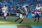 December 10, 2017: Minnesota vs Carolina. Devin Funchess scores a touchdown