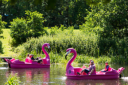 © Licensed to London News Pictures. 22/06/2019. Warwick, Warwickshire, UK. People on pedalos enjoy the weather on the river Avon in Warwick during a hot summers day. Photo credit: LNP
