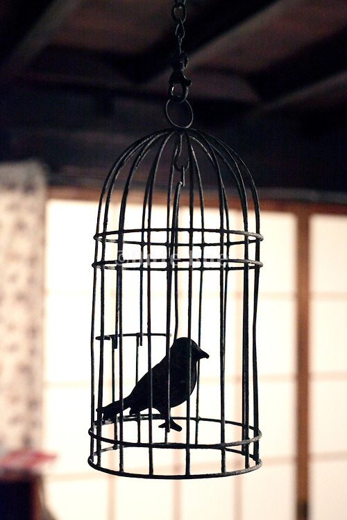 metal fake bird in cage