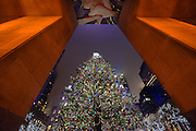 The Rockefeller Center Christmas Tree stands lit, Wednesday, Nov. 30, 2016, in New York. The 94-foot tall Norway spruce is covered with more than 50,000 multi-colored LED lights. (Photo by Diane Bondareff/Invision for Tishman Speyer/AP Images)