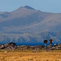 Walkers looking over to Dingle, Co. Kerry
