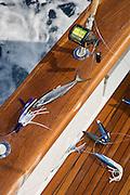 Natural bait teaser on teak covering board.