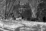 New York. horse car in Central park in winter in the snow ,  Hansom cabs, /  caleches dans Central park, en hiver dans la neige. les - Hansom cabs - carrioles à cheval