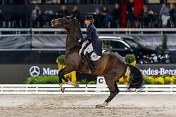 SCHNEIDER Dorothee (GER), Faustus<br /> Stuttgart - German Masters 2019<br /> Preis der Firma Stihl<br /> Int. Dressurprüfung - CDI4*<br /> Aufgabe: FEI Grand Prix 2009, Rev. 2014<br /> Qualifikation zum Grand Prix Special<br /> 16. November 2019<br /> © www.sportfotos-lafrentz.de/Stefan Lafrentz