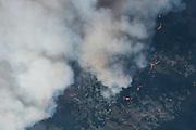 The Soberanes fire burns through the dense and often impassable brush of the Big Sur Coast. ©2016 Sivani Babu