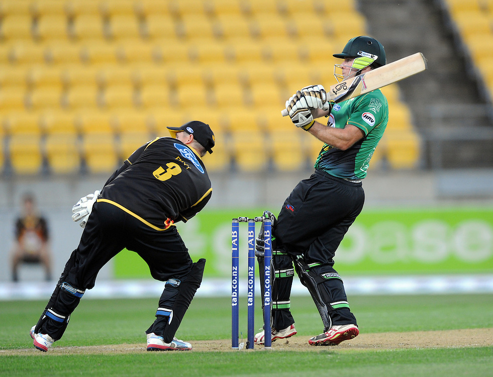Central Stags Jamie How hooks to the boundary over the head of Wellington Firebirds Michael Papps in the HRV T20 cricket match at Westpac Stadium, Wellington, New Zealand, Friday, November 22, 2013. Credit:SNPA / Ross Setford