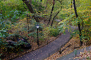 The Ramble in Central Park.