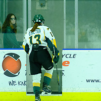 1st year forward Emma Coulter (13) of the Regina Cougars in action during the Women's Hockey Home Game on October 21 at Co-operators Arena. Credit Matt Johnson/©Arthur Images 2017