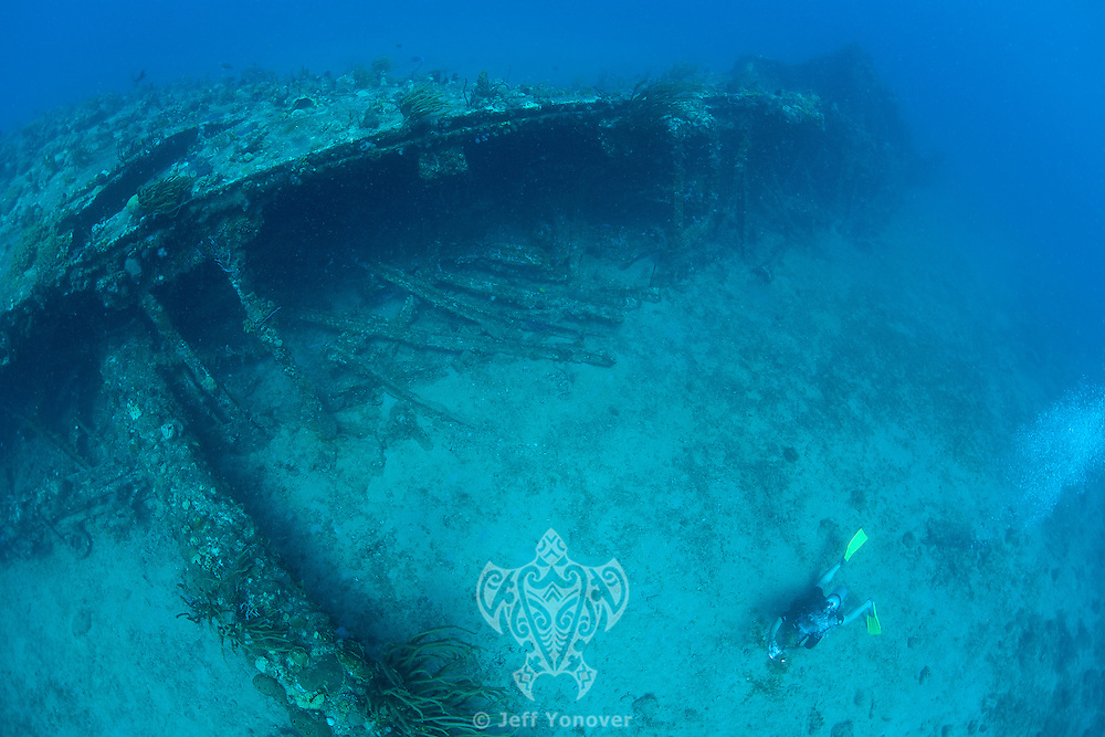 "On the Shipwreck of the RMS Rhone..Detailed info in ""Headline"" section.Shot in British Virgin Islands"