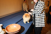 l to r: Cheerio the Pomeranian and Joan Behrend at The133rd Westminister Kennel Club Dog Show Press Conference announcing The Dogue De Bordeaux debut at the Westminister Kennel Club Dog Show held at the Pennsylvania Hotel Sky Top Ball Room on February 5, 2009 in New York City