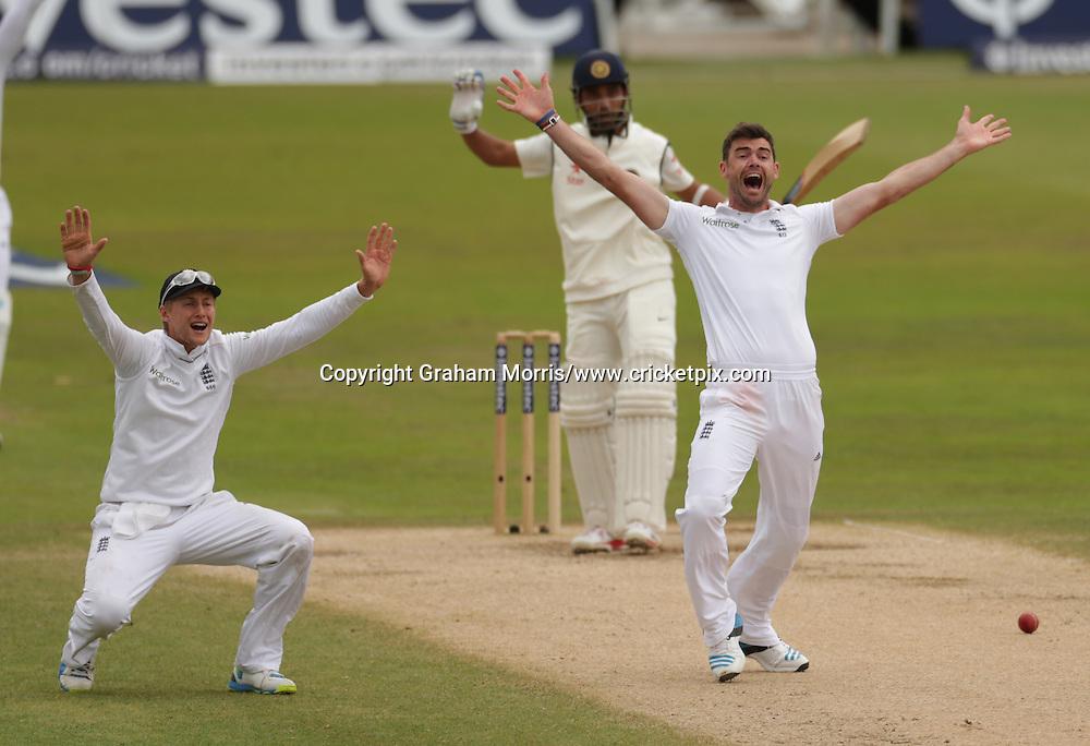 Joe Root and James Anderson appeal, International Test Cricket, England v India, first test, Trent Bridge, Nottingham, England. 9-13 July 2014. Photo: Graham Morris/www.photosport.co.nz