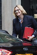 Downing Street, London, February 11th 2016. Energy Secretary Amber Rudd attends the weekly cabinet meeting. <br /> Picture by Paul Davey/Focus Images Ltd +447966 016296<br /> 01/03/2016