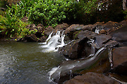 Jackass Ginger Waterfall, Judd Trail, Nuuanu Valley, Honolulu, Oahu, Hawaii