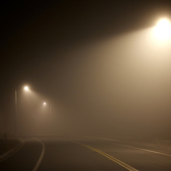 Light posts along an empty road in the fog. Irvine, CA.