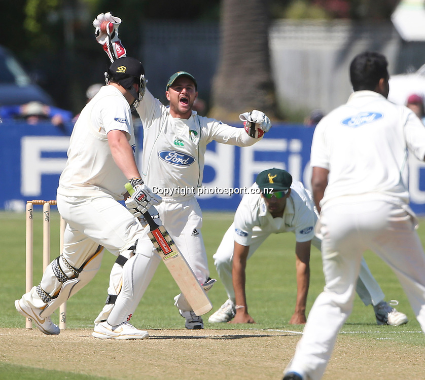 Stag's wicketkeeper, Kruger van Wyk appeals for the wicket of Jesse Ryder in the Plunket Shield cricket match between the Central Districts Stags and the Wellington Firebirds at Nelson Park, Napier,  New Zealand. Tuesday, 30 October, 2012. Photo: John Cowpland / photosport.co.nz