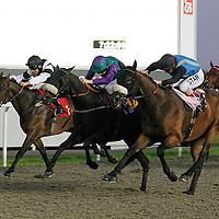 Ermyntrude and Ian Mongan winning the 7.20 race