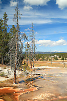 Firehole Spring in Yellowstone National Park, Wyoming