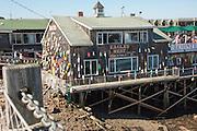 Bar Harbor, Maine, USA