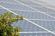 Electricity converting solar panels on a roof. With the continues reduction on cost of ownership of these panels, combined with the rise in the cost of electricity have created a positive return on investment on solar electricity. The surplus electricity is sold to the electric company for distribution