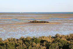 Low tide on a Springe tide below the mangroves in Broome's Roebuck Bay.