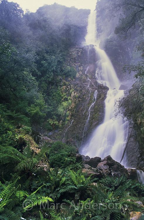 Montezuma Falls near Rosebery, Tasmania