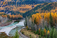 Middle Fork of the Flathead River in autumn in Glacier National Park, Montana, USA