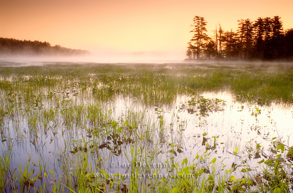 A misty sunrise in summer on Damariscotta Lake. Nobelboro, Maine