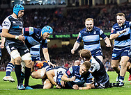 Gareth Anscombe of Cardiff Blues celebrates scoring his sides first try<br /> <br /> Photographer Simon King/Replay Images<br /> <br /> Guinness PRO14 Round 21 - Cardiff Blues v Ospreys - Saturday 27th April 2019 - Principality Stadium - Cardiff<br /> <br /> World Copyright © Replay Images . All rights reserved. info@replayimages.co.uk - http://replayimages.co.uk